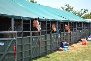 Traditional stables Devon County Show